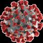 Corona-virus-3
